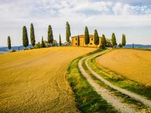 Typical Farm In Tuscan Landsca...