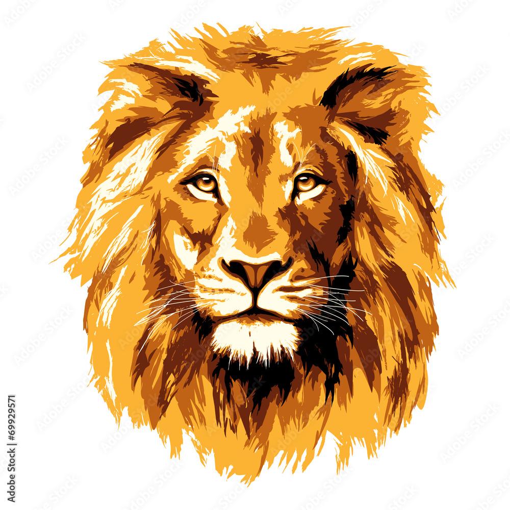 Fototapeta Big fiery lion
