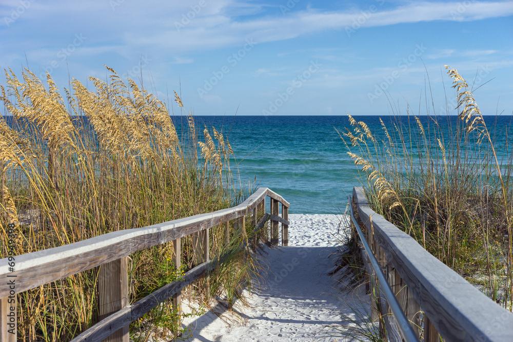 Fototapeta Beach Boardwalk with Dunes and Sea Oats