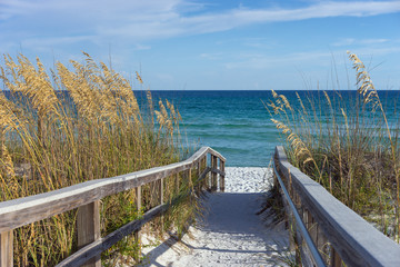 Fototapeta Beach Boardwalk with Dunes and Sea Oats