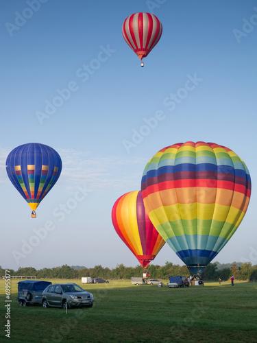 In de dag Ballon Montgolfiere #81