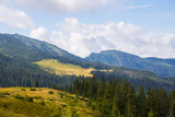 Ridge Marmarosy