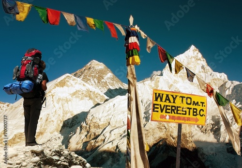 Wall Murals Nepal view of Everest - way to Everest Base Camp - Nepal