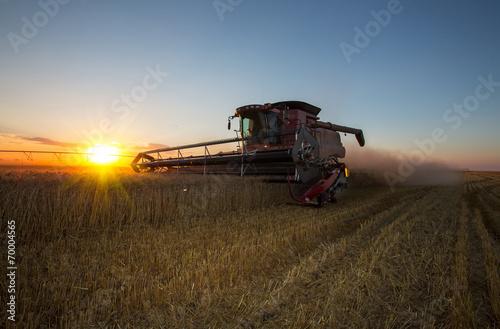 Fall harvest Tapéta, Fotótapéta