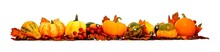 Border Of Autumn Leaves, Pumpkins And Vegetables Over White