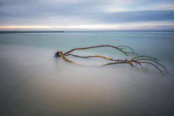 Fototapeta Minimalistyczny Morze, plaża o wschodzie słońca