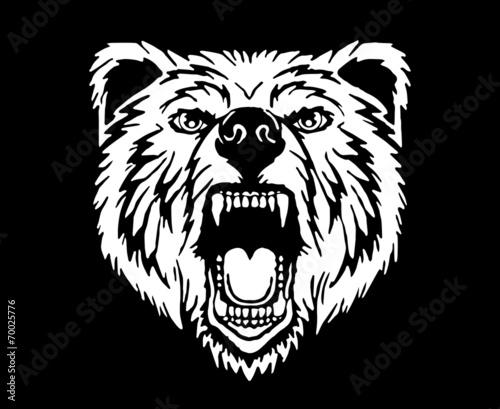 Poster Croquis dessinés à la main des animaux Angry Bear