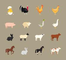 Farm Animals Set In Flat Style