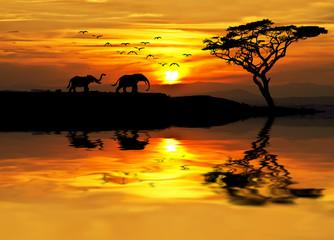 Panel Szklany Wschód / zachód słońca puesta de sol en Africa