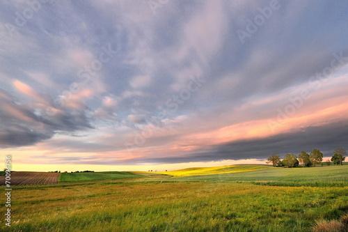 Fotobehang Rijstvelden Krajobraz wiejski