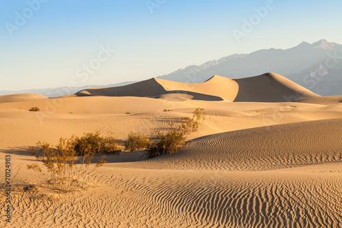 Death Valley Desert - 70124983