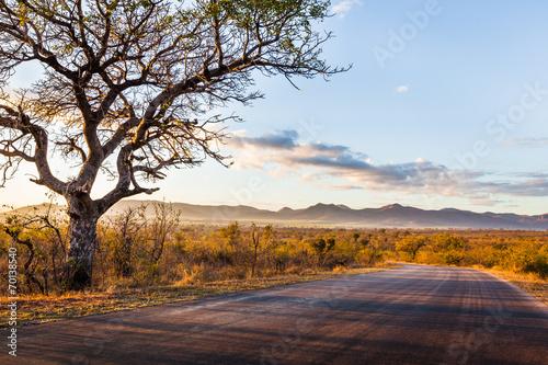 Foto op Plexiglas Afrika African Landscape