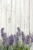 Fototapeta Lavender - Bouquet lavender