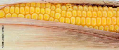 Valokuva Corn