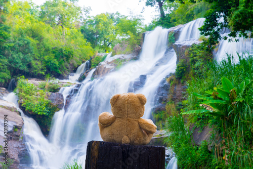 Foto op Aluminium Bos rivier Brown bear sitting at the waterfall