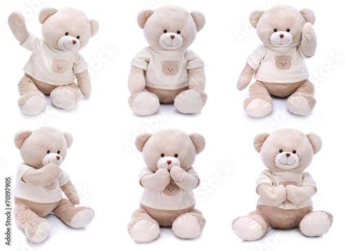 Fototapeta Teddy bears in different poses on white background obraz