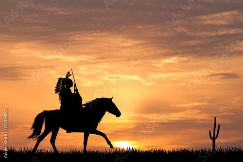Foto op Aluminium Texas Crazy horse