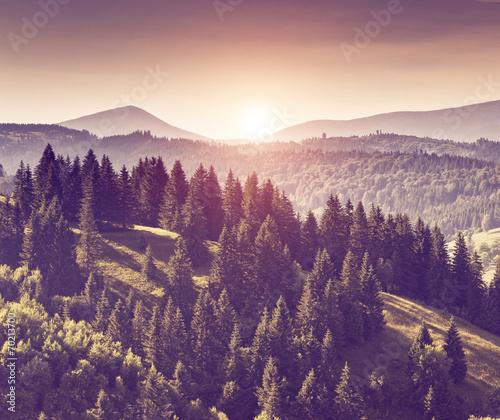 Foto op Aluminium Aubergine retro mountain landscape