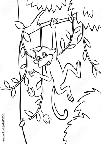 Little Monkey Swinging On The Tree Buy This Stock