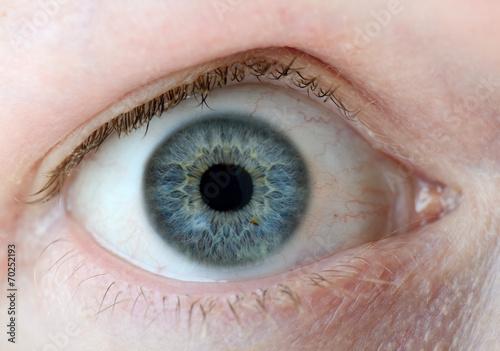 Foto auf Leinwand Iris Blue eyes