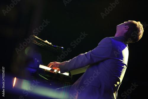 Fotografie, Obraz  pianista di schiena