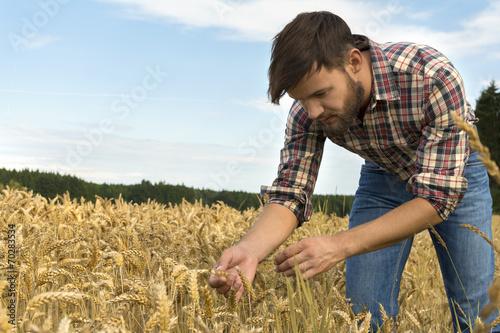 Fotografía  Young farmer inspecting crop