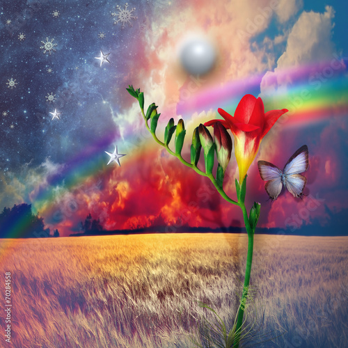 Canvas Prints Imagination Starry landscape with freesia and rainbow