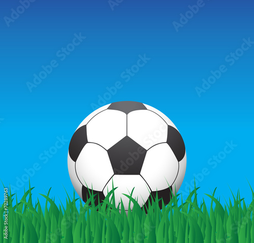 soccer ball on a grass Canvas Print