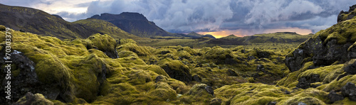 Garden Poster Black Surreal landscape with wooly moss at sunset in Iceland