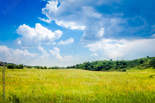 Staande foto Bleke violet green field and blue sky
