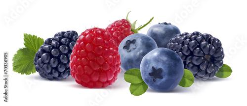 lasowe-jagody-odizolowywac-na-bialym-tle
