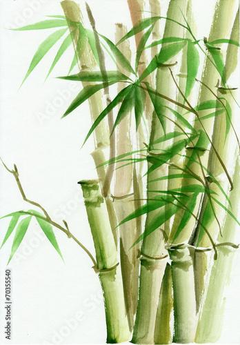 akwarela-malarstwo-bambusowe
