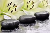 Fototapeta Kamienie - Kamienie bazaltowe z liliami w tle