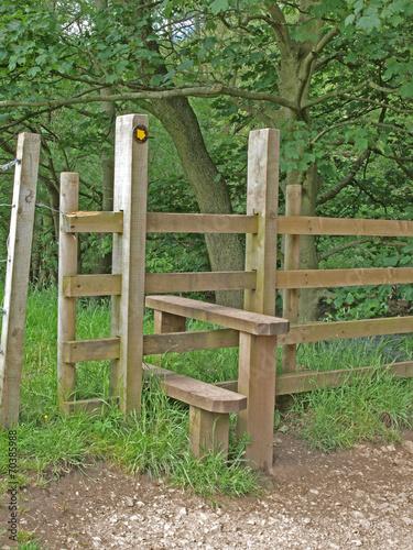 Fotografie, Obraz  Stile in Dovedale, Derbyshire.