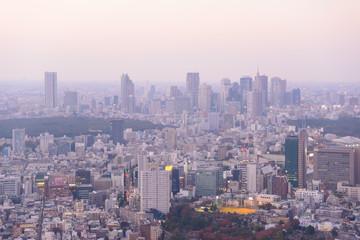 Tokyo in the twilight, direction to Shibuya, Shinjuku