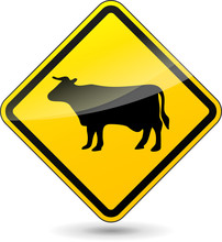 Vector Cow Sign