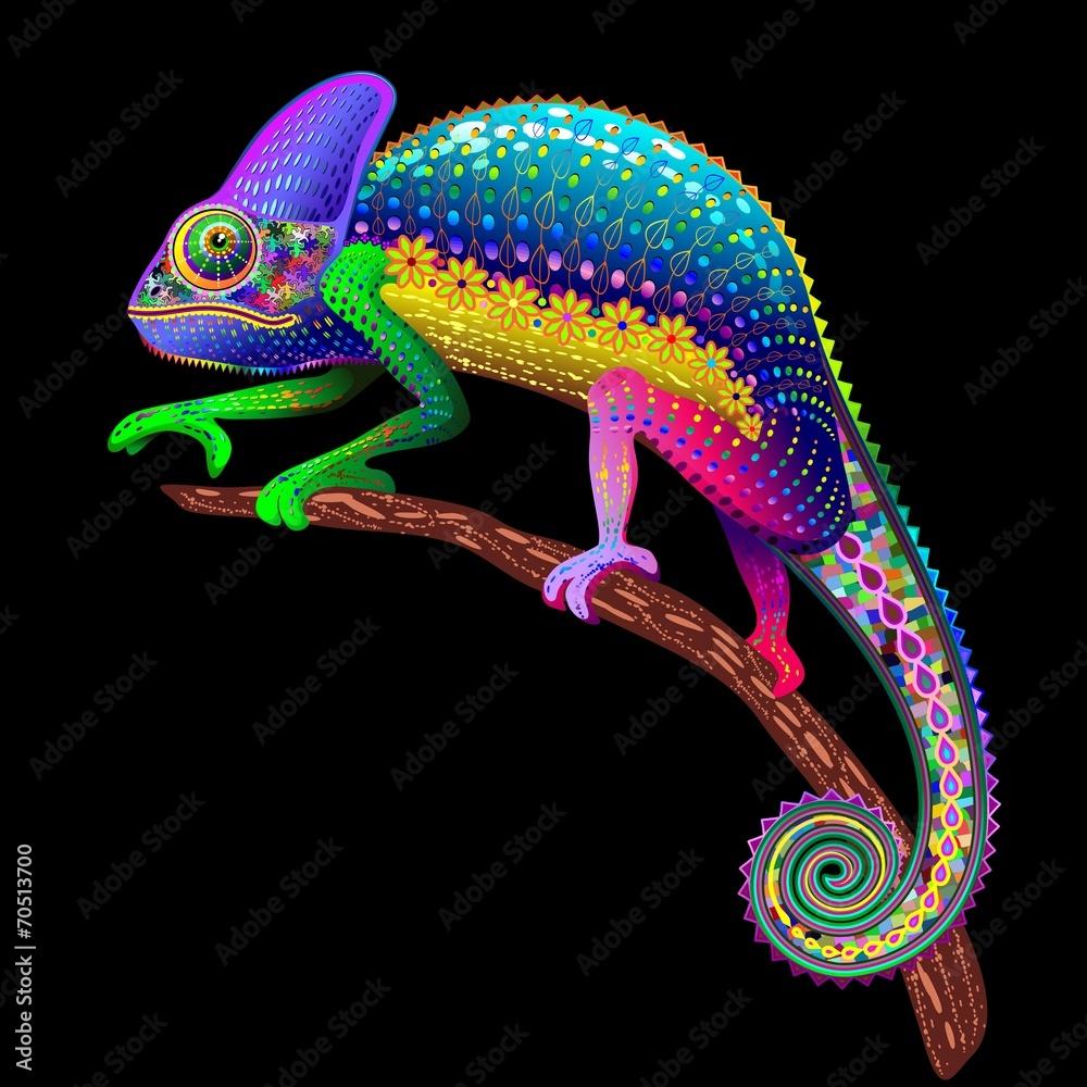 Fototapety, obrazy: Fantazyjny kameleon w kolorach tęczy