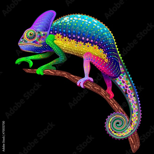 Photo Stands Draw Chameleon Fantasy Rainbow Colors