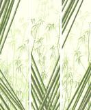 Fototapeta Sypialnia - Set of vertical banner with many bamboos.