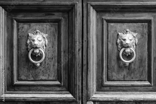Fotografie, Obraz  Maniglia di porta a forma testa di Leone, bussare