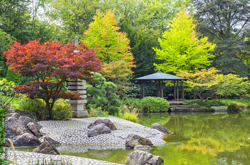 Fotobehang Tuin Red tree near the green pond in Japanese garden