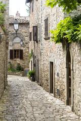 Fototapeta Montefioralle (Chianti, Tuscany)
