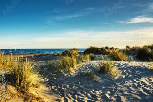 Fotografía  plage et dunes