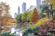 The Pond in Central Park's lower east corner during the fall