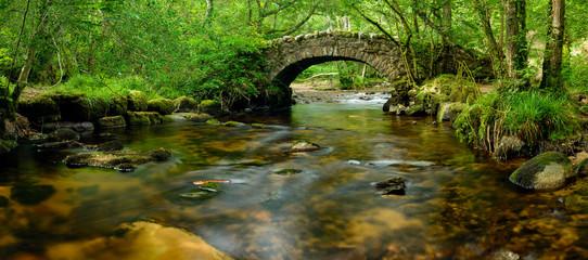 Most Dartmoor