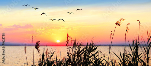 panoramica de un paisaje amaneciendo en el lago