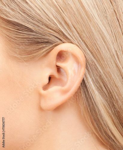 Fotografija close up of woman's ear