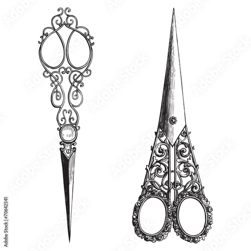 Fotografie, Obraz Ornate scissors