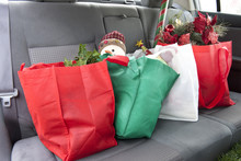 Christmas In The Back Seat