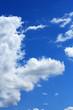 Freakish Cloud